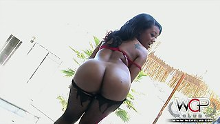 Ebony chicks posing and exposing big bubbled asses