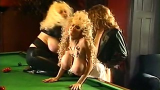 Busty and wild blonde milfs having fun with two guys