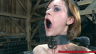 Smalltitted slave hardfucked from behind
