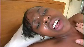 Ebony sugar Majesty screaming from T. T. Boy's stiff black dick